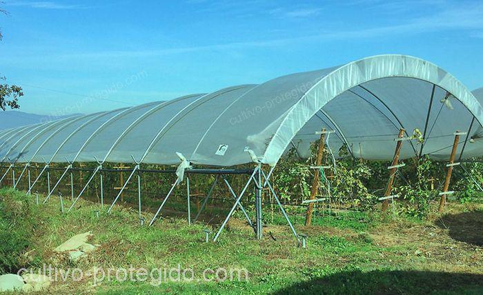 macrotunel instalado en campo protegiendo cultivos